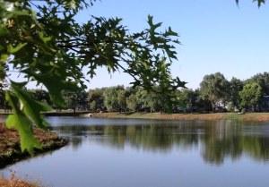 My little lake