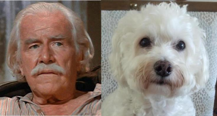 Zeb and Sam. Two lovable old souls.