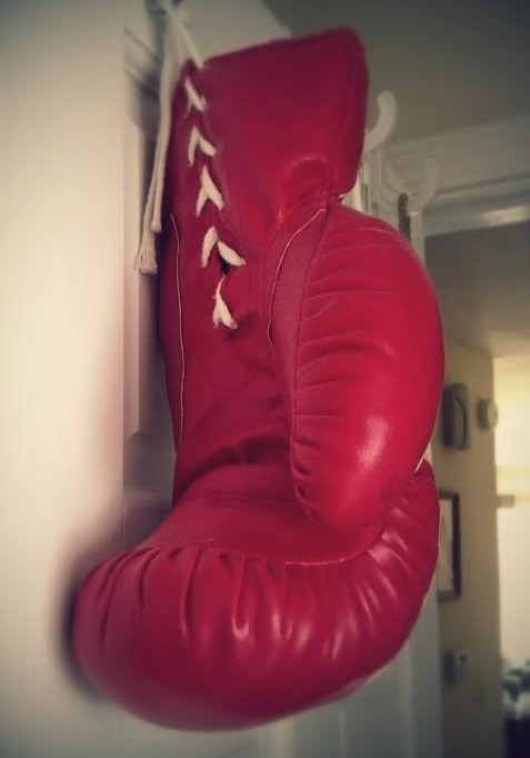 boxing glove (2)