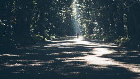 journey via freddie marriage