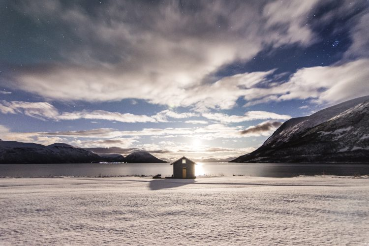 winter-by-jamie-macpherson